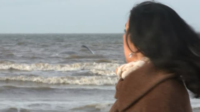 sperm whale washed up on hunstanton beach reporter to camera - クジラ目点の映像素材/bロール