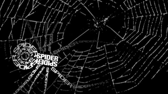 spider made of words - spider stock videos and b-roll footage