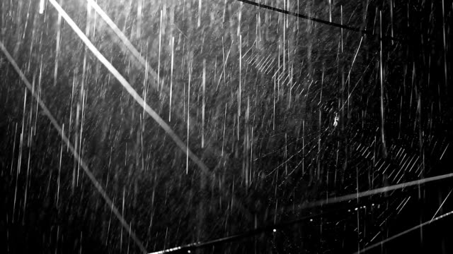 spider web & rain - power cable stock videos & royalty-free footage
