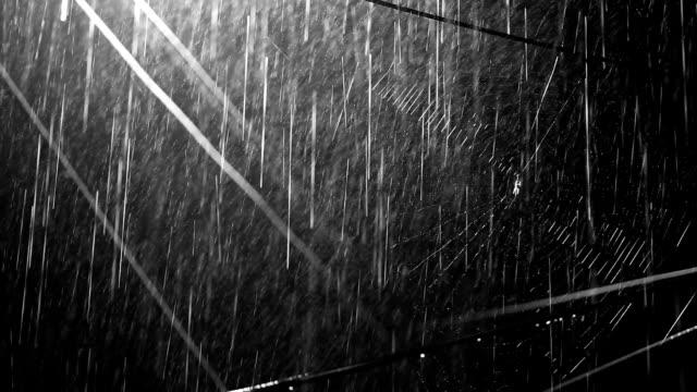 spindelnät & regn - tonad bild bildbanksvideor och videomaterial från bakom kulisserna