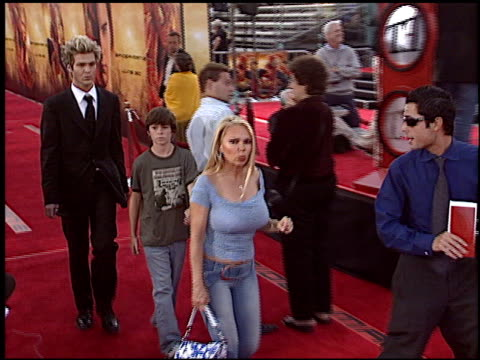 spider-man 2 premiere at the 'spider-man 2' premiere on june 22, 2004. - house spider stock videos & royalty-free footage