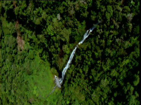 "stockvideo's en b-roll-footage met spinning track over tall waterfall in rainforest, papua new guinea - ""bbc natural history"""