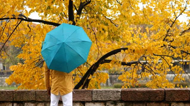 spinning umbrella - umbrella stock videos and b-roll footage