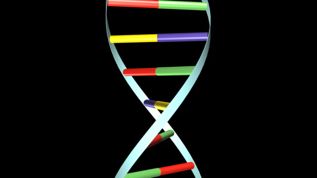 dna spins - helix model stock videos & royalty-free footage