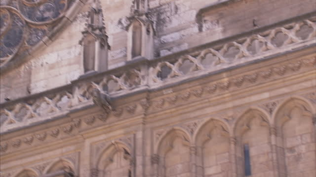 spirals and circles define the shape of the west rose window of lyon cathedral. - rose window stock videos and b-roll footage