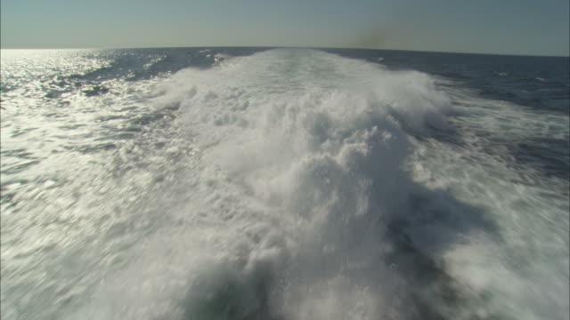 ms, pov, splashing water trail behind ship - bootsperspektive stock-videos und b-roll-filmmaterial