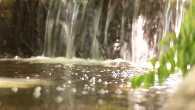 vídeos de stock, filmes e b-roll de mergulhar na água - riacho