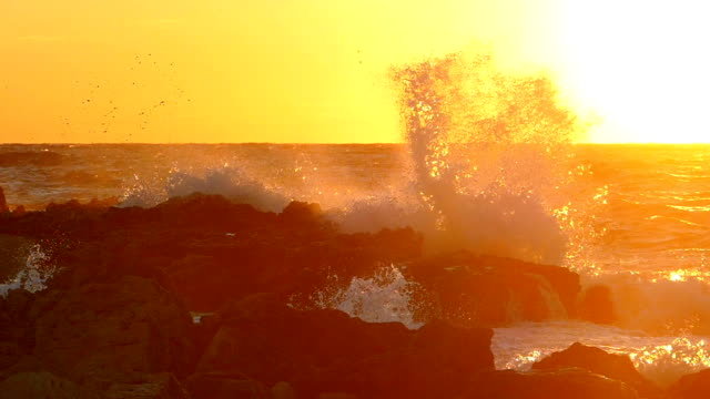 splashing waves at sunset (slow motion) - orizzonte sull'acqua video stock e b–roll