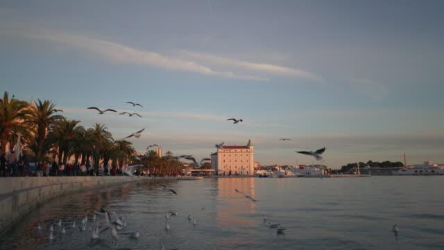 vídeos y material grabado en eventos de stock de split croatia harbor at sunset - región de dalmacia croacia