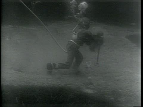 vídeos y material grabado en eventos de stock de sponge diver on ocean floor harvesting sponges / men on deck of ship haul in bags of sponges / team of divers working together / - esponja