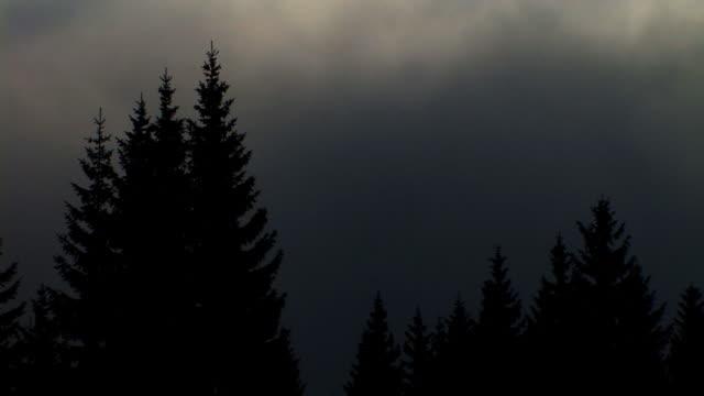 hd time-lapse: spooky cloud scene - spruce stock videos & royalty-free footage