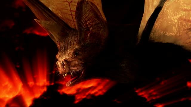 stockvideo's en b-roll-footage met spooky halloween bat - graaf dracula