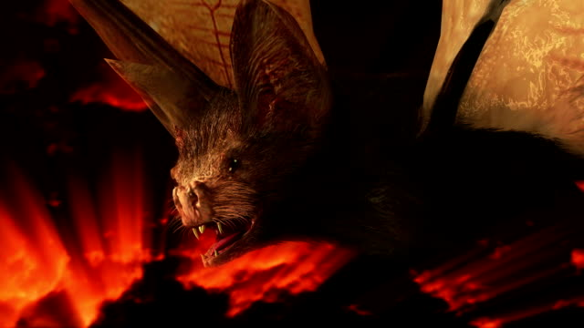 spooky halloween bat - count dracula stock videos & royalty-free footage