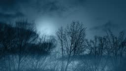Spooky Halloween Night Time-lapse Full Moon and Haunted Woods