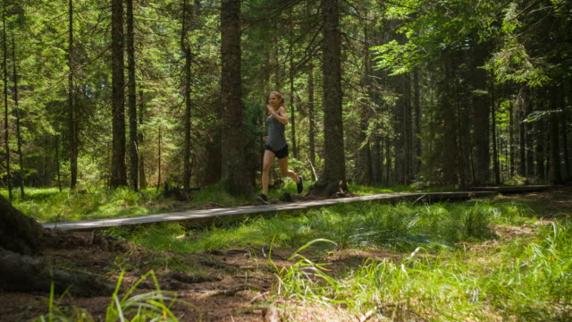 sporting woman jogging on forest trail - woodland stock videos & royalty-free footage