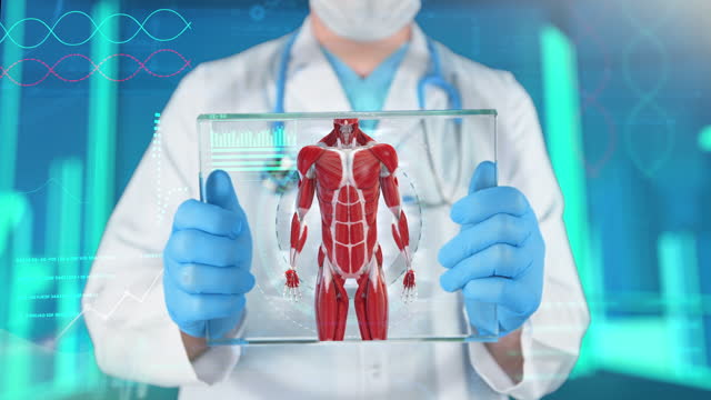 sportsperson examining - 4k resolution - human muscle stock videos & royalty-free footage