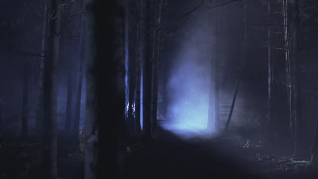A spotlight flashing through thick fog in a forest at night.