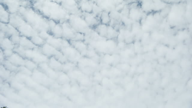 vídeos de stock e filmes b-roll de spotted clouds in sky, low angle - low angle view