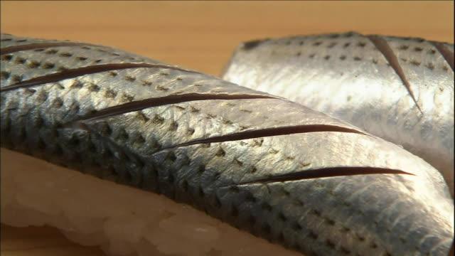 spotted shad covers nigiri ovals. - nigiri stock videos and b-roll footage