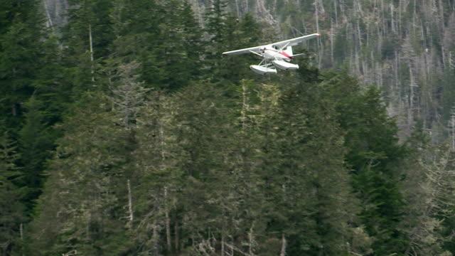 spotter plane flying over herring fishery, sitka sound, alaska - 水上飛行機点の映像素材/bロール