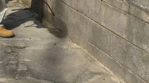 吹きかけるのバグ - 虫除け点の映像素材/bロール