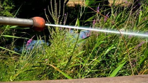 昆虫用スプレー - 虫除け点の映像素材/bロール