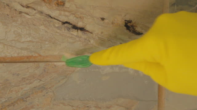Spraying the grout with cleaning solution and scrubbing with a tootbrush.