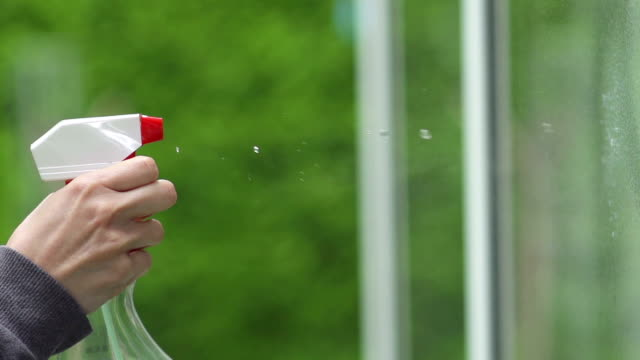 spraying the window with cleaner - cleaning product stock videos and b-roll footage