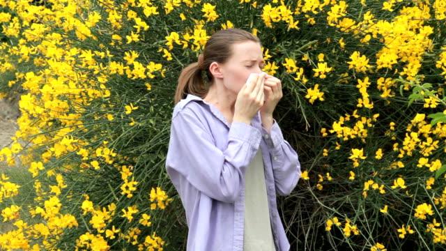 vídeos y material grabado en eventos de stock de cornejo resorte con tratamiento hipoalergénico - estornudar