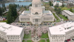 Spring Cherry Blossoms at the State Capital Building in Olympia Washington