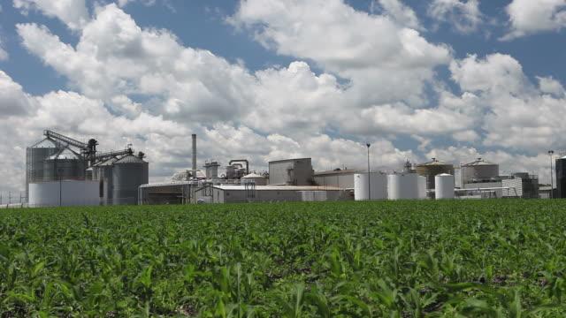Spring Cornfield mit Ethanol Plant im Hintergrund