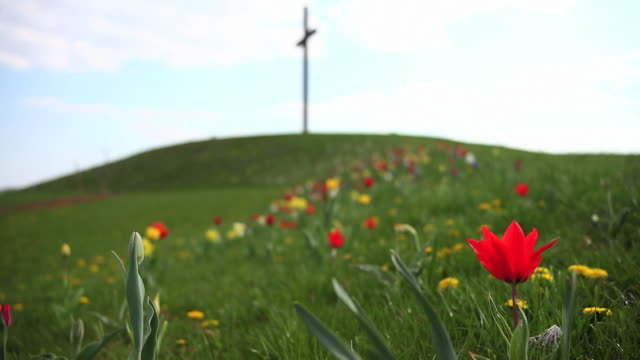 spring flowers in front of a cross - ewigkeit stock videos & royalty-free footage