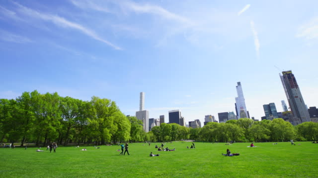 Spring fresh green trees surround the Sheep Meadow at Central Park New  York. Manhattan Central Park South skyscrapers can be seen behind.