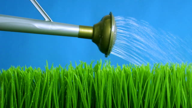 spring grass .. - watering can stock videos & royalty-free footage