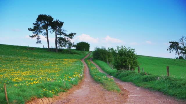 CRANE UP: Spring Landscape