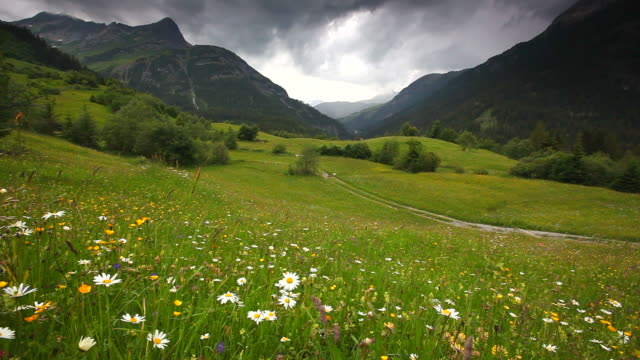 vidéos et rushes de printemps prairie et ciel menaçant près de steeg- tyrol, autriche - format hd