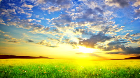spring nature. sunrise. - multi layered effect stock videos & royalty-free footage