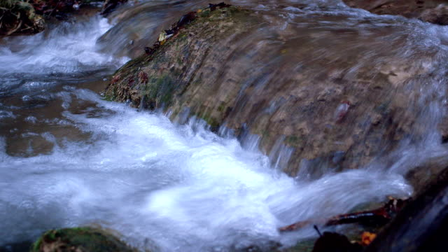 spring of living waters