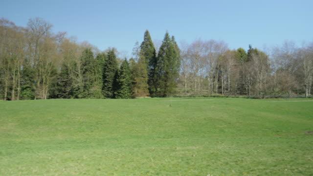 spring park,Northern Ireland