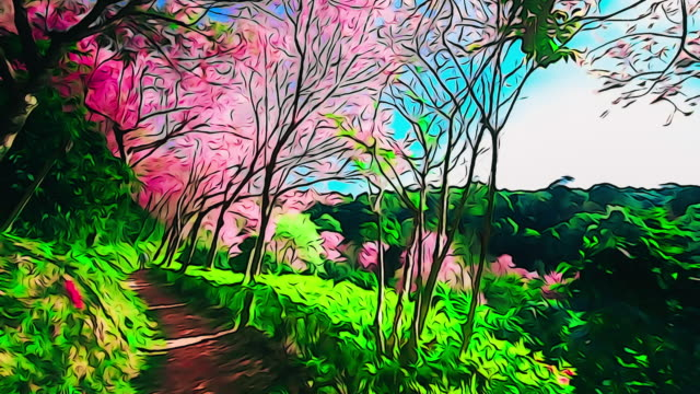 spring pink cherry blossoms in chiang mai - month stock videos & royalty-free footage