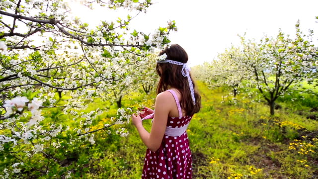 spring princess - polka dot stock videos and b-roll footage