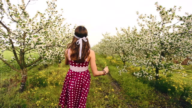 spring princess - polka dot stock videos and b-roll footage