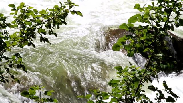 vidéos et rushes de toboggan de la rivière de printemps - rivière merced