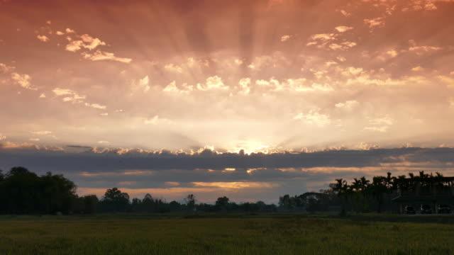 Frühling Sonnenaufgang