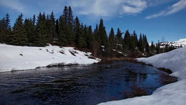 spring thaw on canyon creek, chugach national forest, alaska - chugach national forest stock videos & royalty-free footage