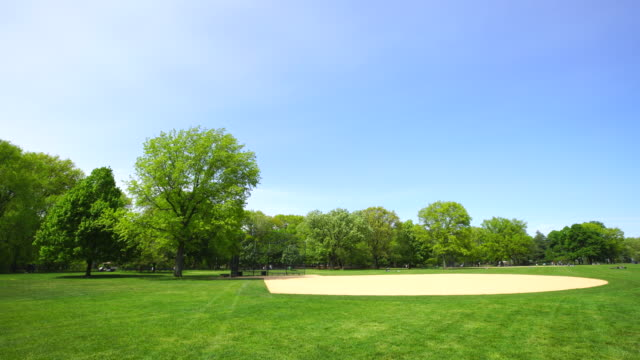 spring wind shakes fresh green trees around the great lawn central park new york. two big trees stand next to baseball diamond. park cart runs at pathway behind. - baseball diamond stock videos and b-roll footage