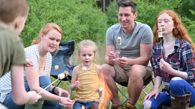 vídeos de stock e filmes b-roll de springtime campers roasting marshmallows over open fire - família com quatro filhos