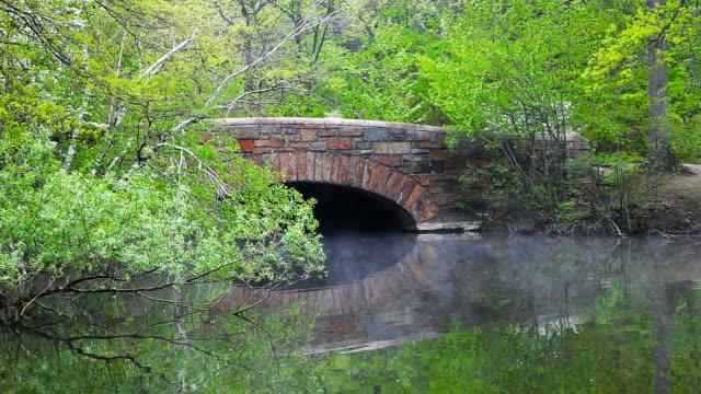 springtime in boston - musical instrument bridge stock videos & royalty-free footage