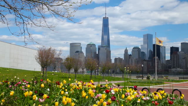 primavera a new york city - le quattro stagioni video stock e b–roll