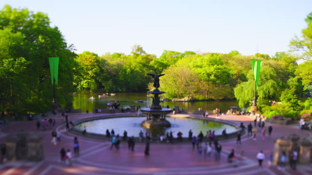 vídeos de stock e filmes b-roll de springtime late afternoon sunlight illuminates the fresh green trees behind the bethesda fountain in central park at new york city ny usa on may 08 2019. - fonte bethesda